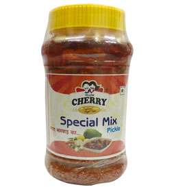 Special Mix Pickle in Jodhpur, Rajasthan- India